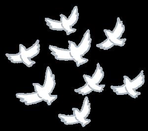 飛び立つ鳩の群れ